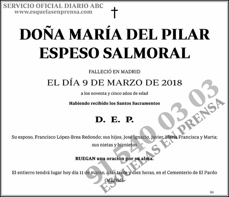 María del Pilar Espeso Salmoral